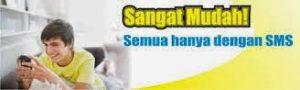 Agen voucher game online murah Kota Banjarbaru