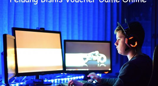 Peluang-Bisnis-Voucher-Game-Online